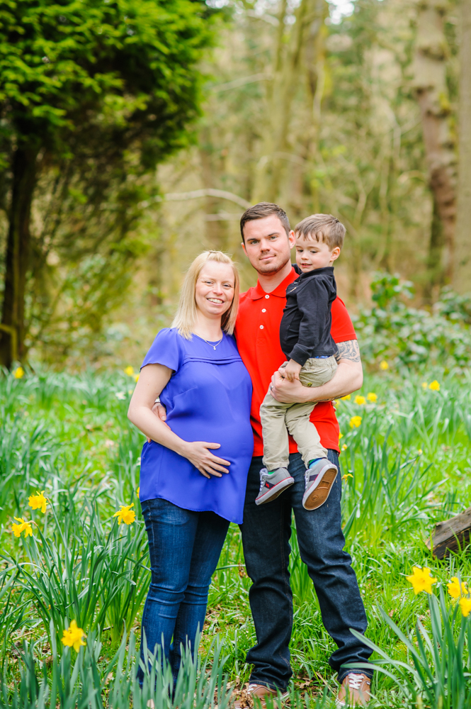 Family photos, maternity portraits daffodils cumbria