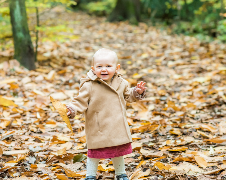 In the Autumn leaves, baby photographers Bothel