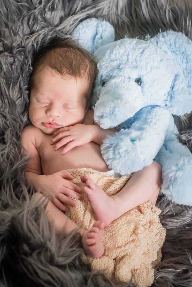 Cuddles with Elephant toy, baby photographers Workington