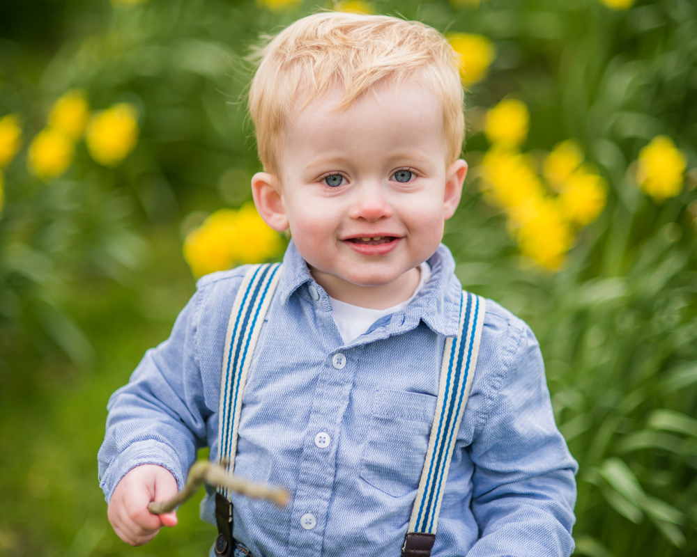 Luke in the daffodils, baby photography