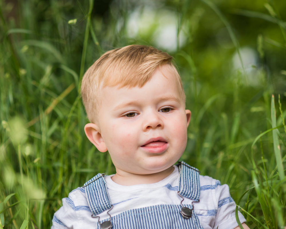 Freddie in long grass, Carlisle family photographers