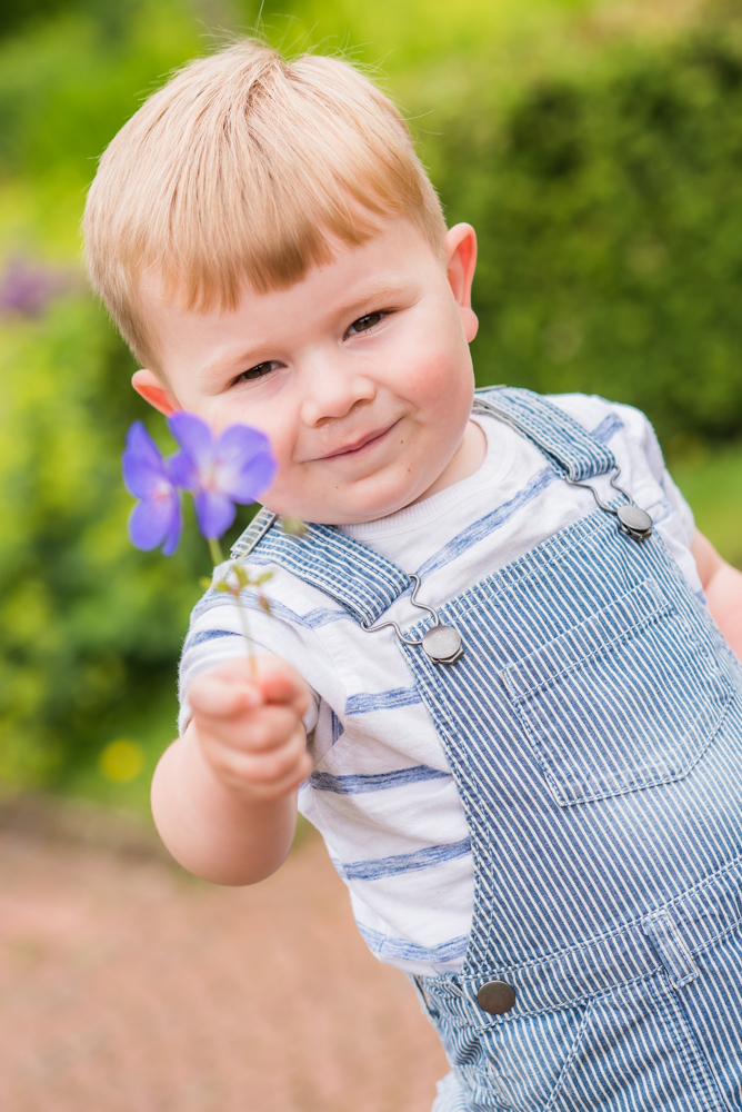 Freddie and a flower, Carlisle family portraits in Bitts Park