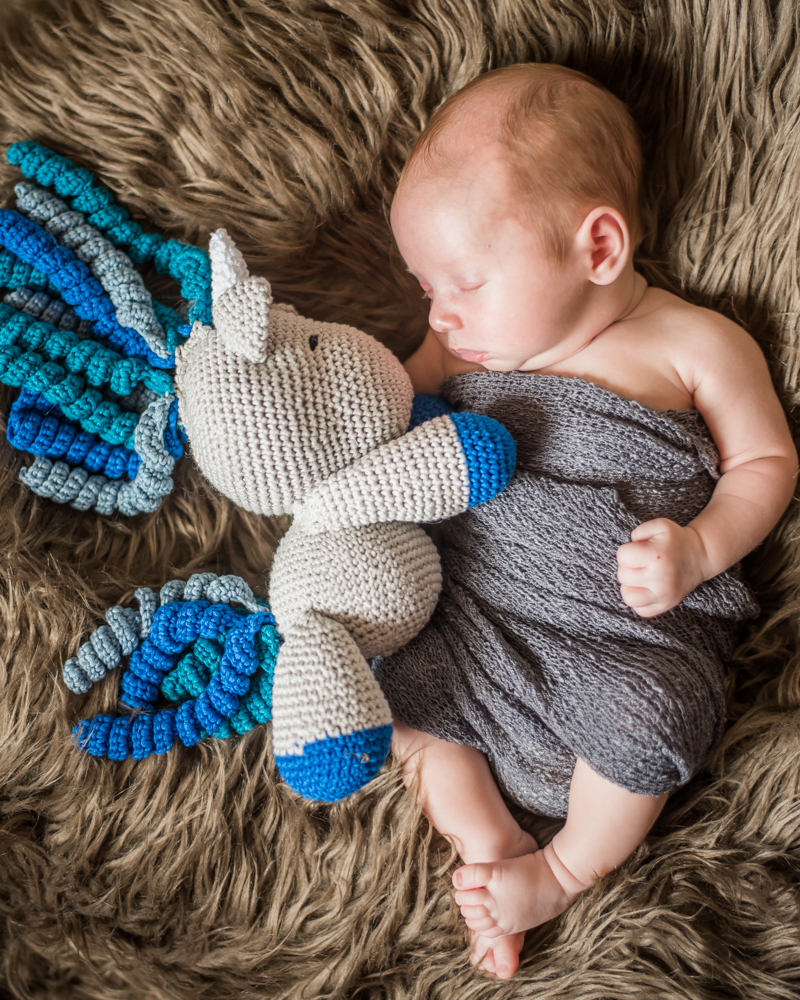 Chester and his unicorn, newborn photography