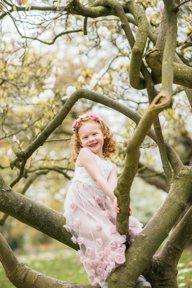 Esme climbing blossom tree, Sheffield family portraits