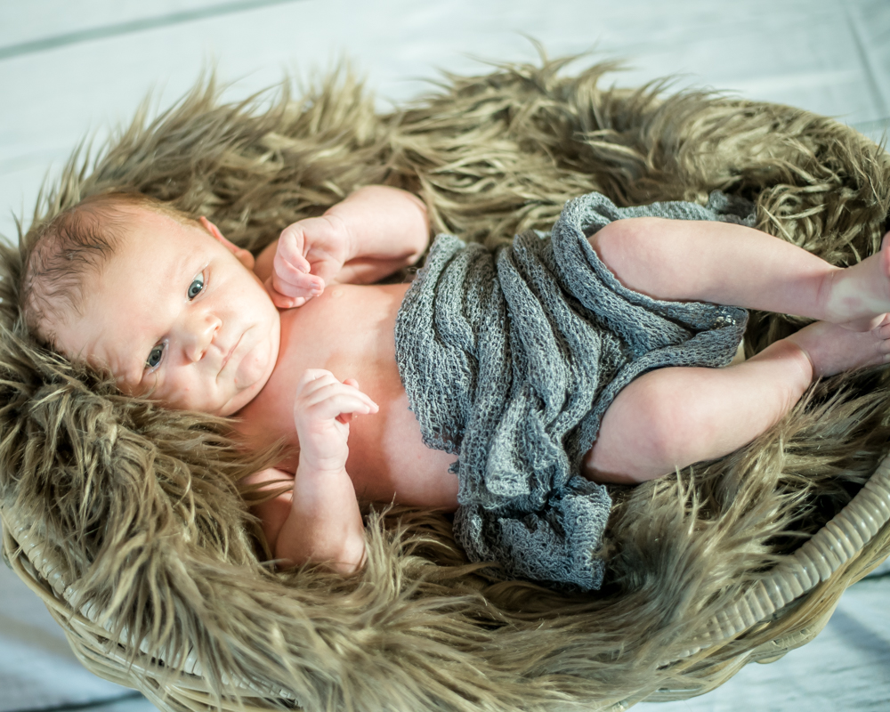 Baby in a bowl, newborn portraits in Cumbria