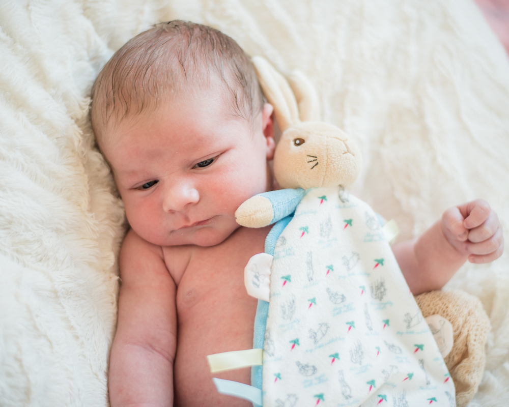 Austin and teddy, newborn photographer Carlisle