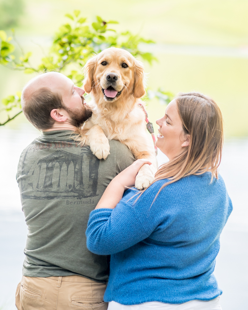 Dog cuddles, Tarn Hows family photographer