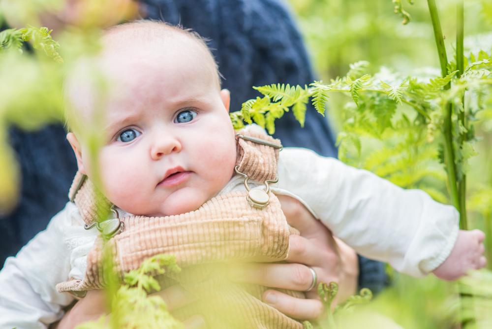 Baby in the ferns, newborn photographer Workington