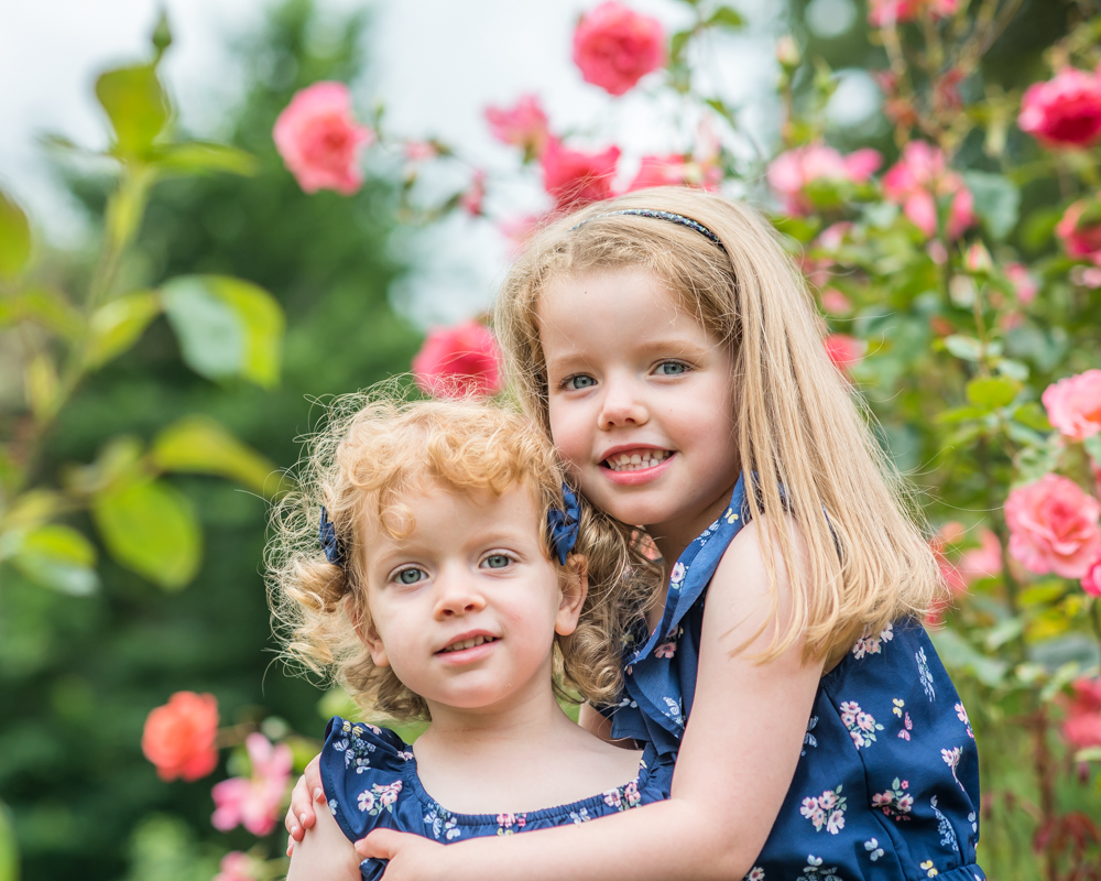 Sisters cuddling in rose garden, Sheffield baby photographers