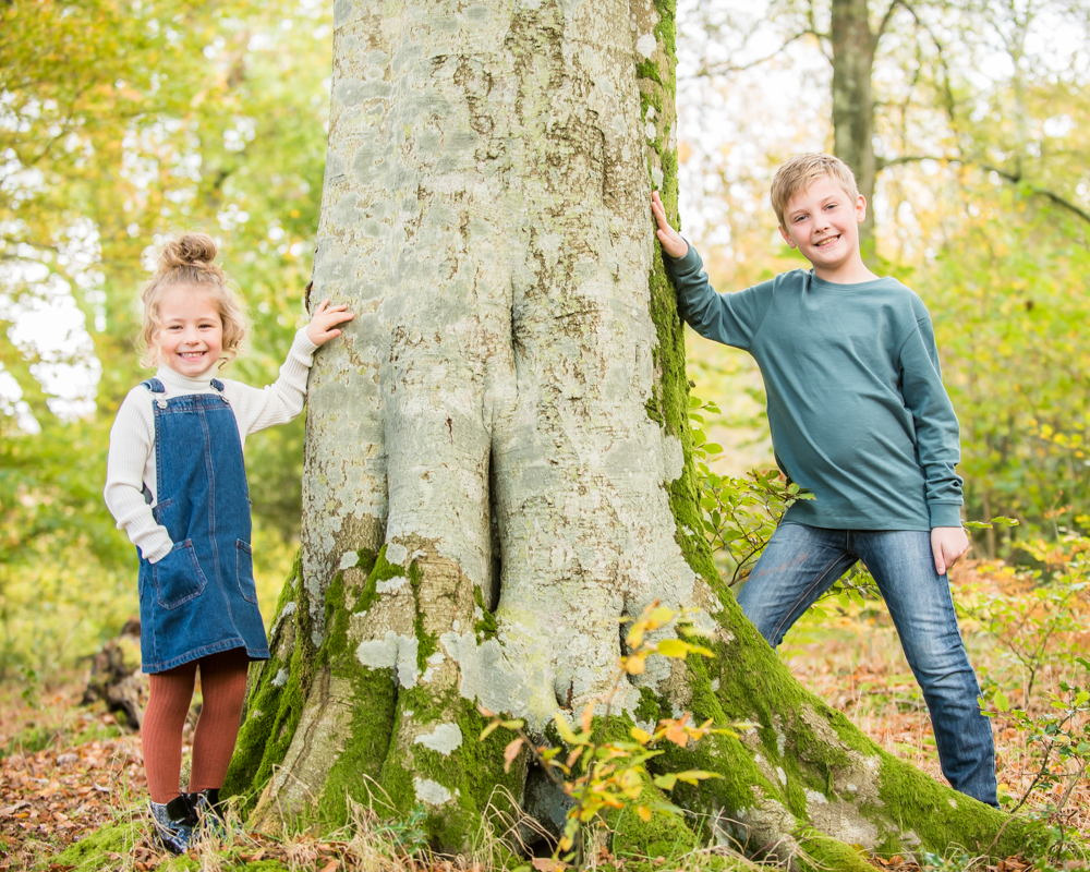 Siblings hanging around tree, Lake District family photographers