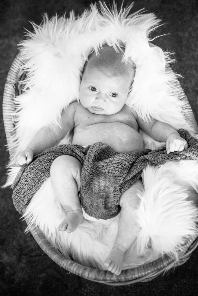 Baby in a basket, newborn portraits Keswick