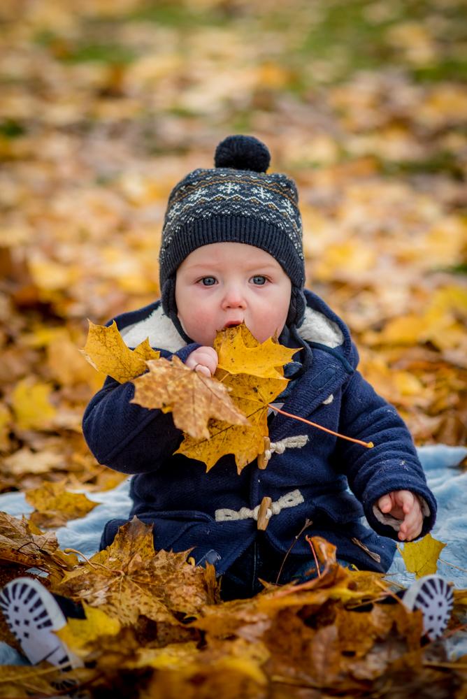 Hugo eating leaves, baby portraits Carlisle
