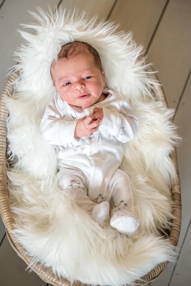 Baby posing, newborn portraits Carlisle