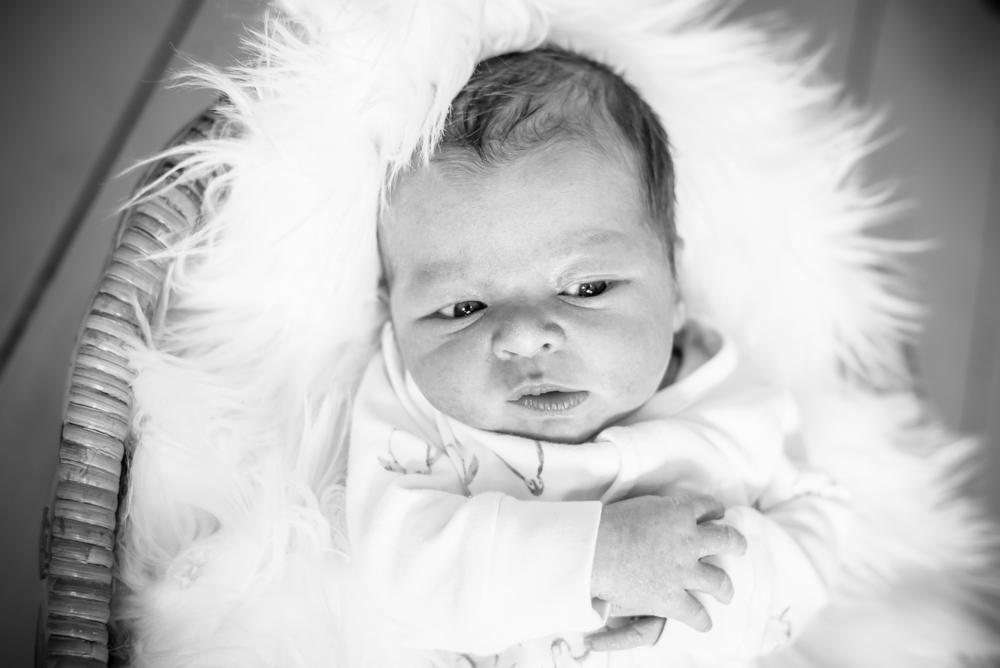Baby expressions, newborn portraits Keswick