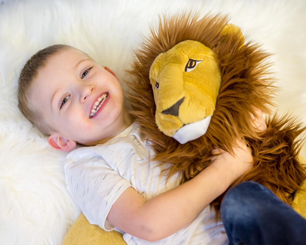 Big brother and his toy lion, family photographers Wigton