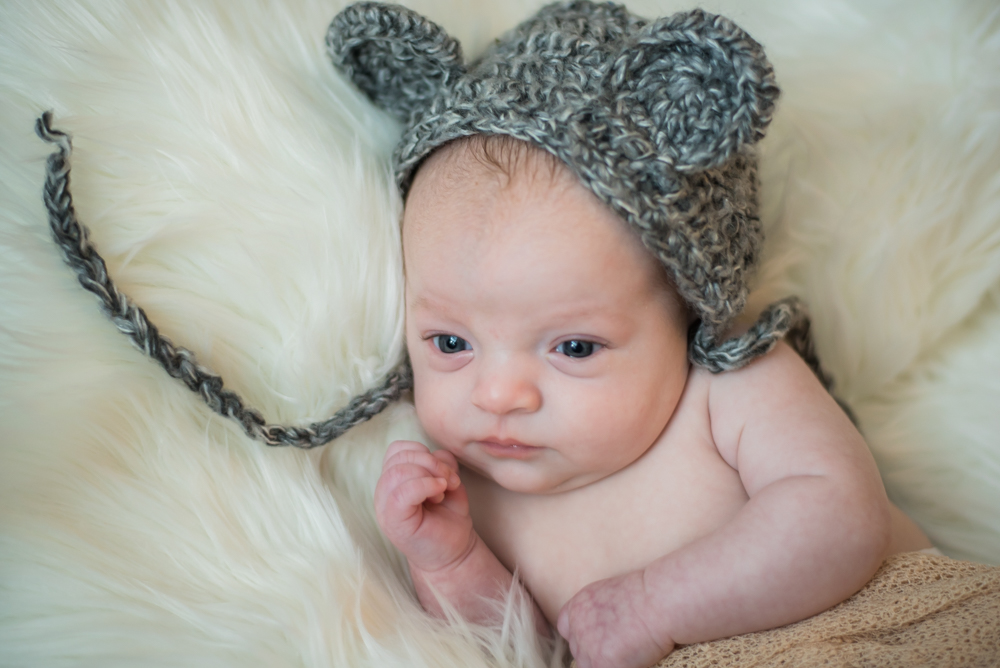 Toby in bear hat, newborn portraits Carlisle